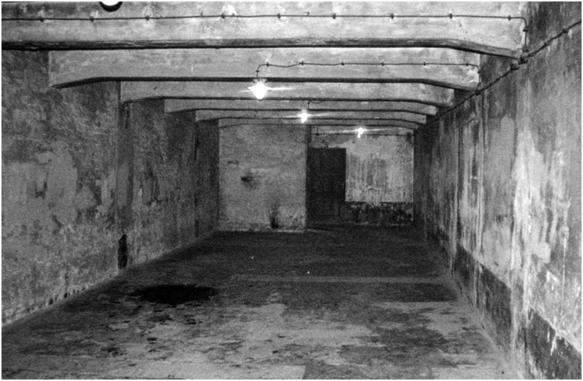 Image result for hitler's concentration camps gas chambers